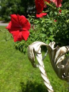 Подвазонник кованый для декора садового ландшафта